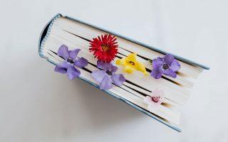 Geschenke-für-Lesebegeisterte